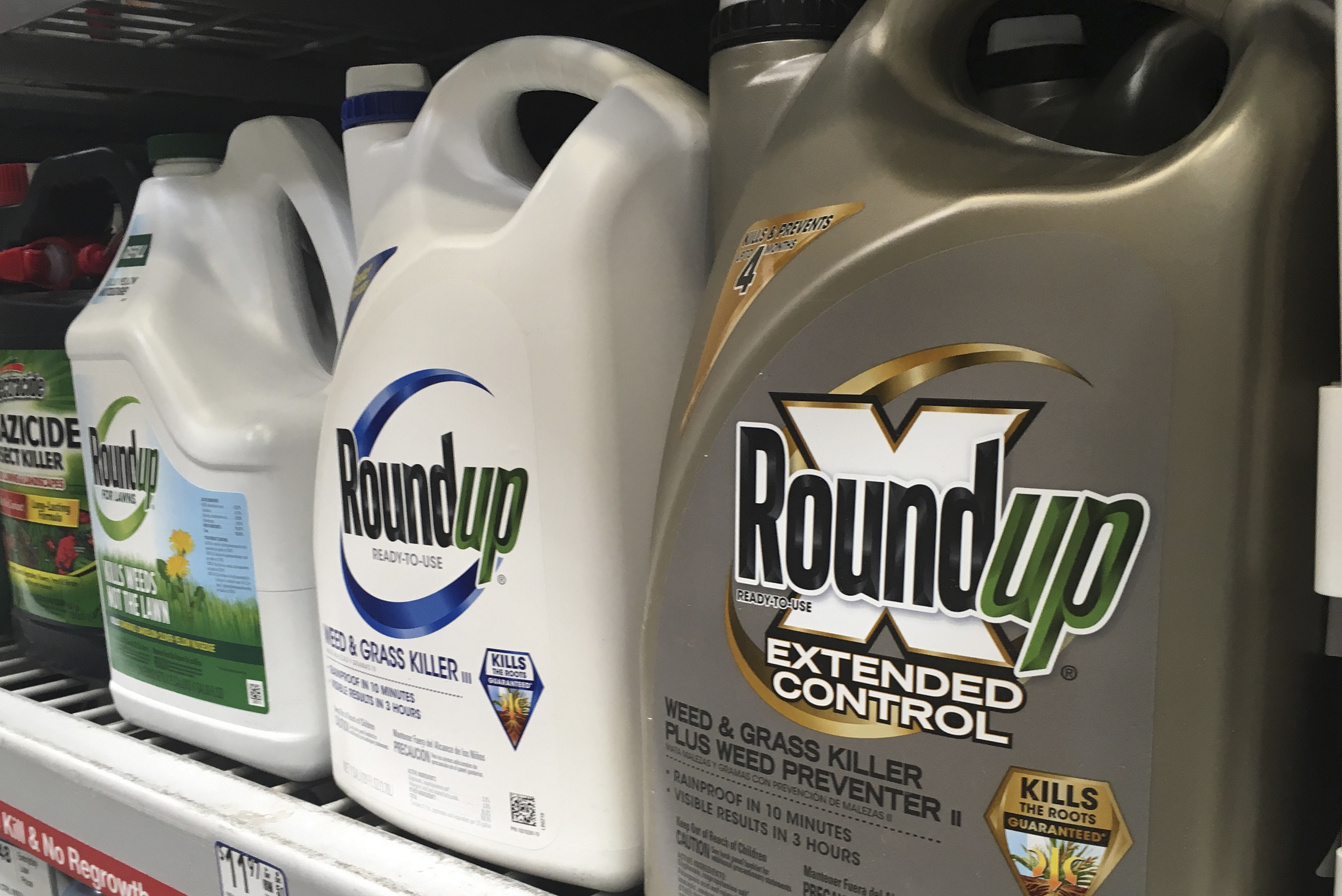 Court upholds $25-million Roundup verdict against Monsanto